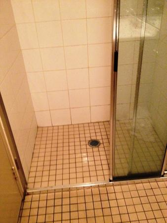 AeA Sydney Airport Serviced Apartments: dirty shower