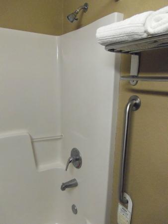 Microtel Inn & Suites by Wyndham Jacksonville Airport: shower