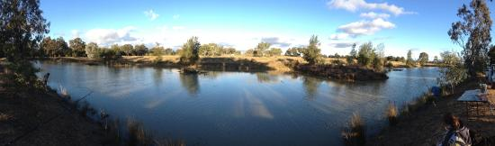 Narrabri, Australia: Fish out dam