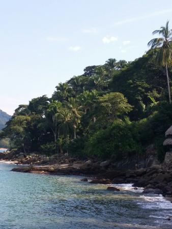 El Jardin Yelapa: Beautiful