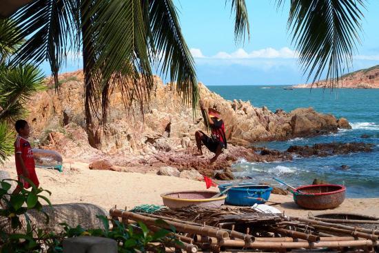 Haven Vietnam : swing of nature
