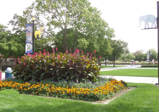 Brookfield Zoo: Beautiful setting as you walk down the paths