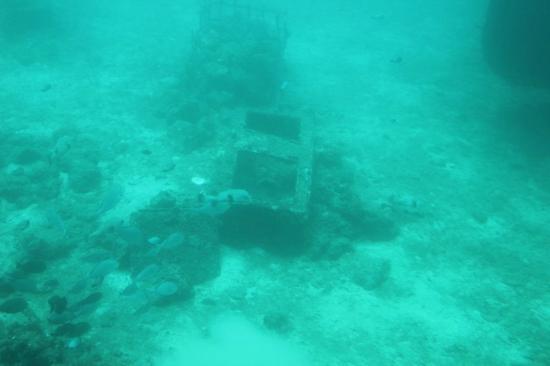 sunken treasure chest picture of odyssey submarine voyage of