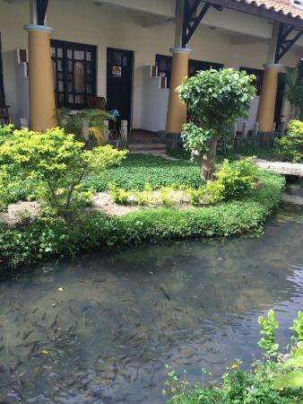 Dynasty Mui Ne Beach Resort: территория отеля