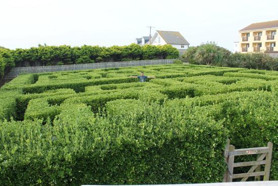 Sands Resort Hotel & Spa: The maze