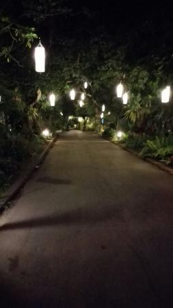 Eco Resort Chiang Mai : Gro7nds at night
