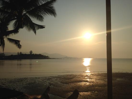 Tango Luxe Beach Villa: Stunning Views