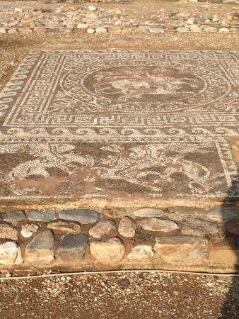 Polygyros, Grécia: More mosaics