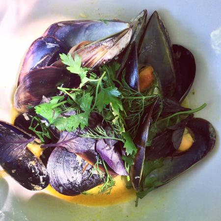 Bread and Wine: Mussels with cafe de paris butter - divine!