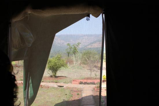 Camp Temgarh: View from the tent
