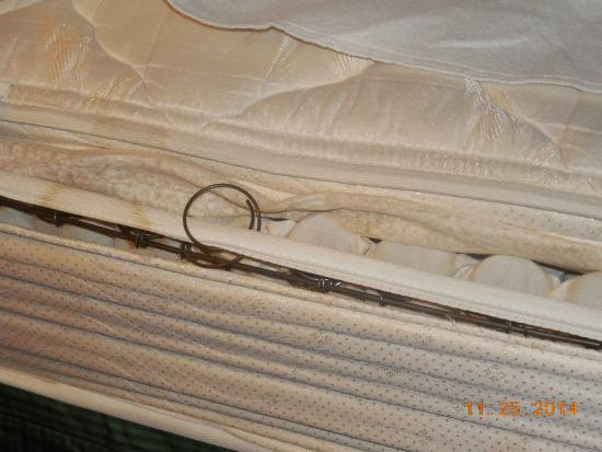 Quality Inn at International Drive: How long does it take for a mattress to get this way?