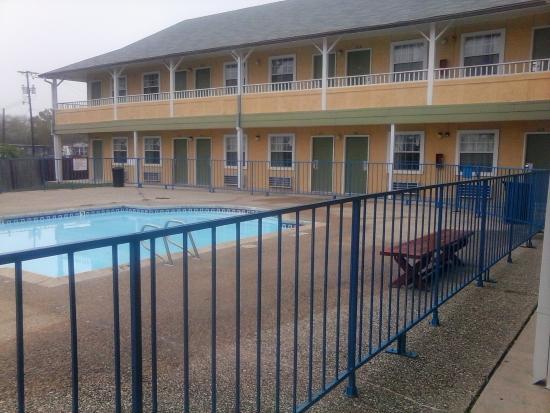 Economy Inn San Antonio: swim at Economy Inn