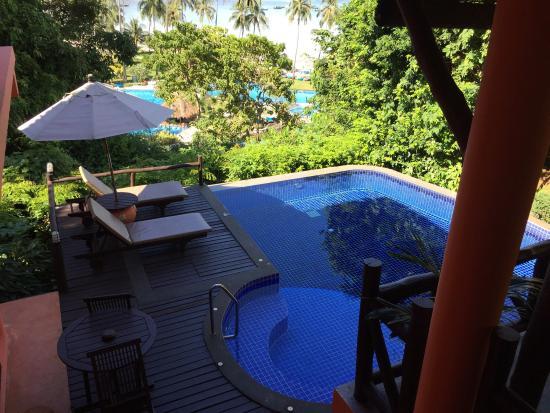 Phi Phi Island Village Beach Resort : Private ocean view pool in our villa