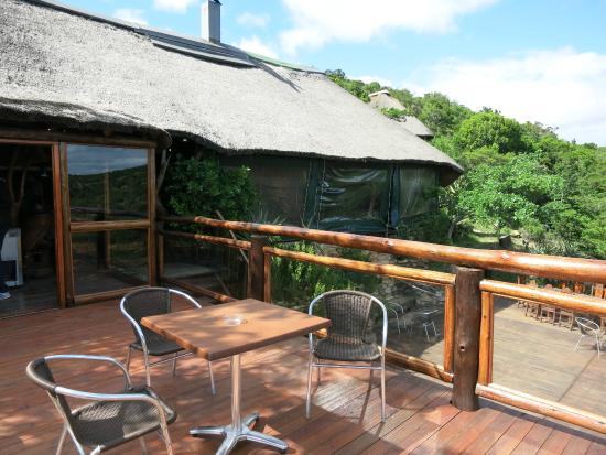 Inkwenkwezi Private Game Reserve Safari Lodge: Das Restaurant