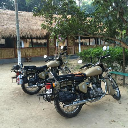 Nature Hunt Eco Camp, Kaziranga National Park: Bike parking (in case you bring one)