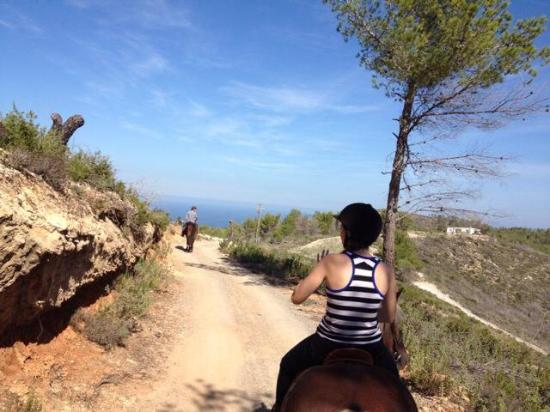 Ibiza Horse Valley: My husband & I