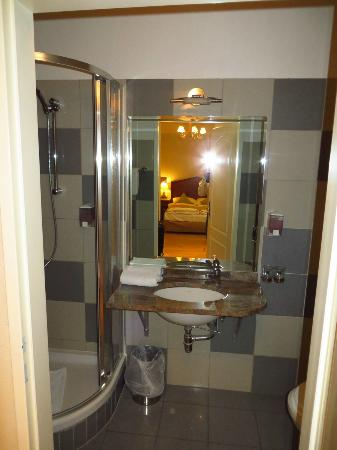Atel Hotel Lasserhof: Baño