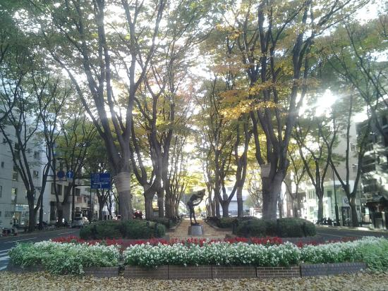 Jozenji-dori Avenue: in autumn