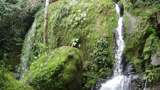 Villa Los Aires/Las Aguas Lodge : Pic of one of the three waterfalls on property