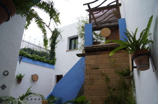 Casa Alborada: Small backyard
