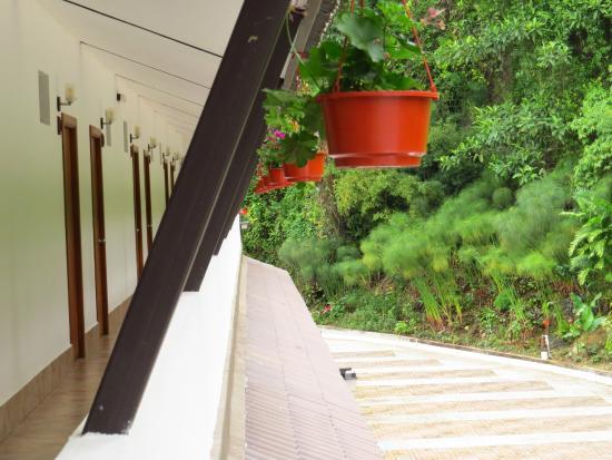 Hotel Ladera: balcón parte de atrás