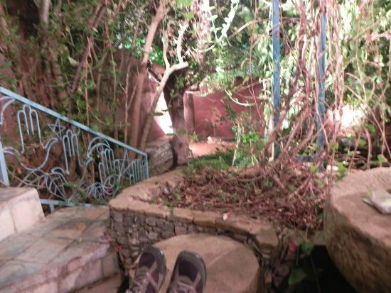 Hotel Molino: Jardín (no se aprecia bien en la foto lo bonito que es)