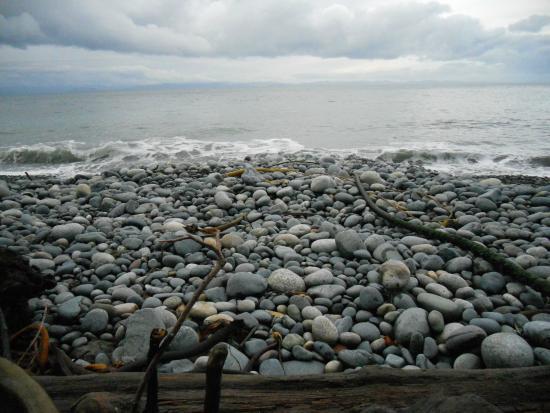 French Beach Provincial Park: French Beach Nov '14