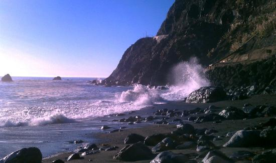 Limekiln State Park: Limekiln Beach