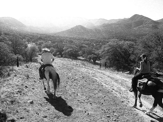 Pearce, Αριζόνα: Riding with Bucky and Tim