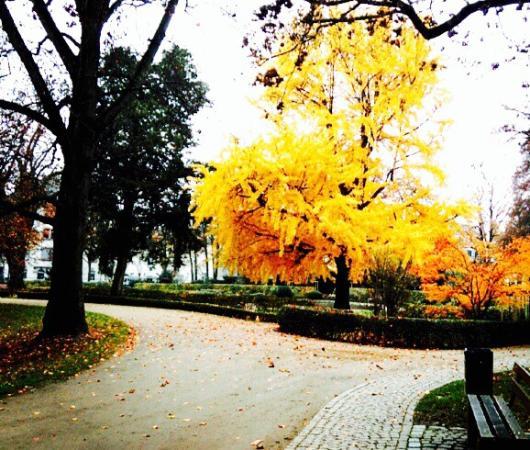 布伦塔诺公园