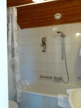 Villa Turnerwirt: Baño