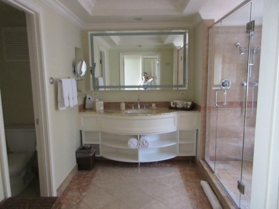 Grand Wailea - A Waldorf Astoria Resort: nicest bathroom