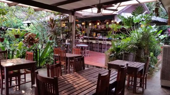 Basaga Holiday Residences: the bar and dining area