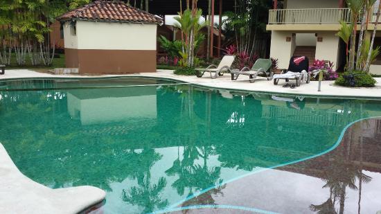 Arenal Backpackers Resort: La alberca