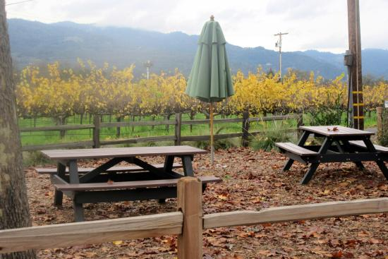 Honig Vineyard & Winery : Hong Winery, Rutherford, Ca