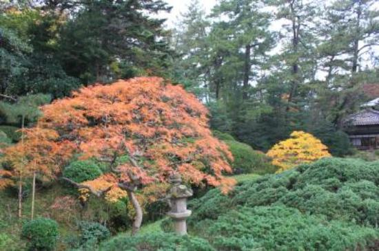 Honma Art Museum Garden : 鶴舞園