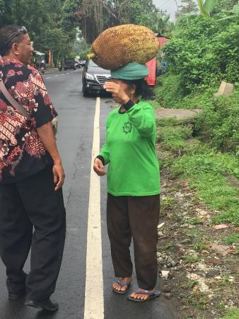 Dewa Bali Tour - Day Tours : Dewa ask the price for us