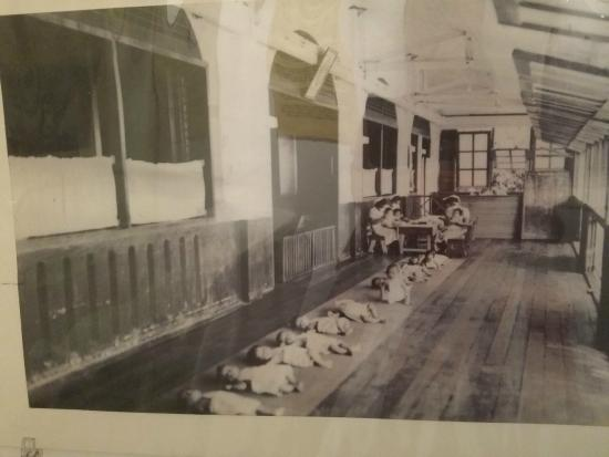 Culion Museum and Archives: babies lined up