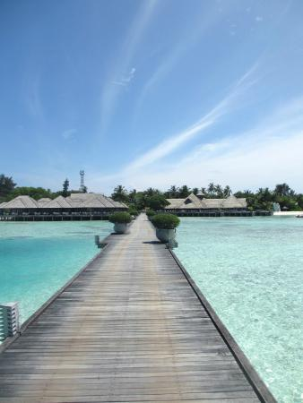 Olhuveli Beach & Spa Resort: pontile