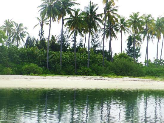Olhuveli Beach & Spa Resort: paradise island, un minuto a nuoto dall'estremo nord est dell'isola