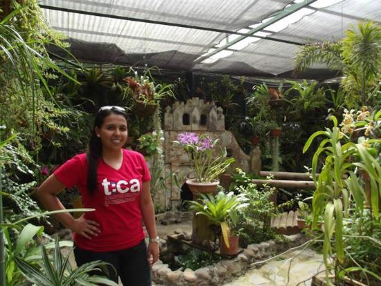 Traveler 2 be picture of jardin botanico lankester for Jardin lankester