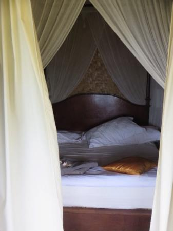 Bedulu Resort: my room