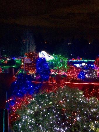 Point Defiance Zoo & Aquarium : Zoo lights