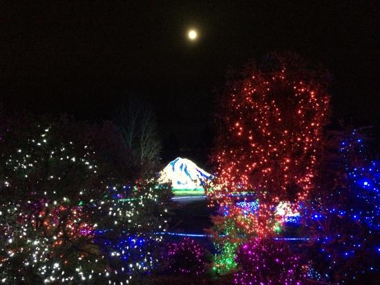Tacoma, WA: Zoo lights with the moon above