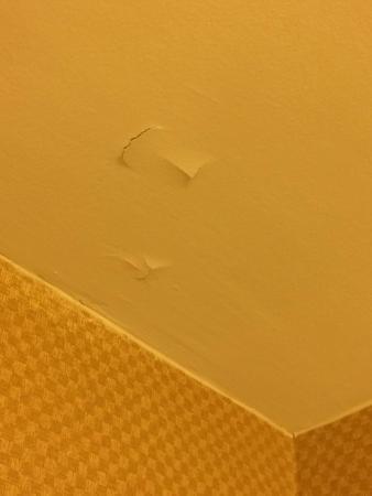 Doubletree by Hilton Hotel Columbia: Peeling paint in bathroom