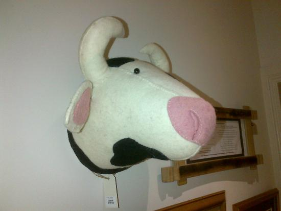 Fab felted cow head at Formartine's
