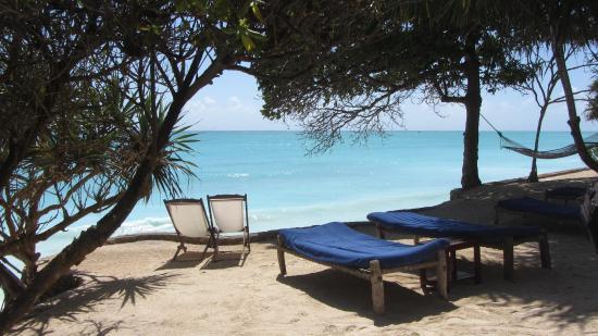 Ras Nungwi Beach Hotel: sur  le  bord de l'océan indien  à Nungwi