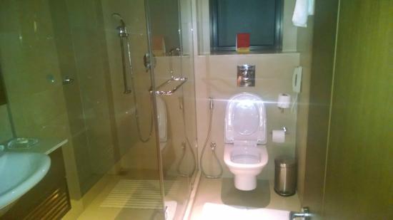 The Astor Hotel Kolkata: Bath