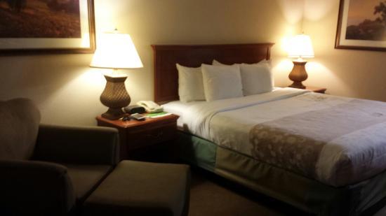 La Quinta Inn & Suites Thousand Oaks Newbury Park: King bed