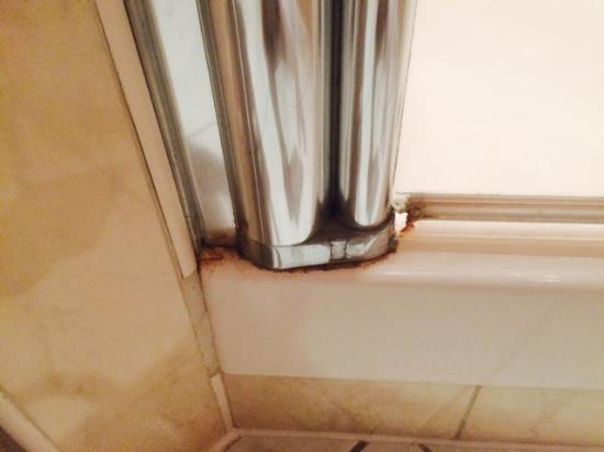 Mercure Cardiff Holland House Hotel and Spa: Dirty Shower 1